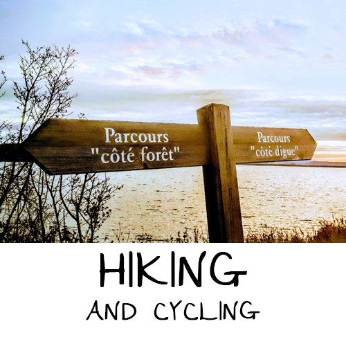 HIKING AND CYCLING